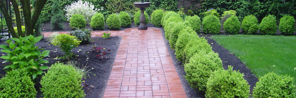 Our staffs are talented and experienced designers, Horticulturists, landscape technician and gardeners
